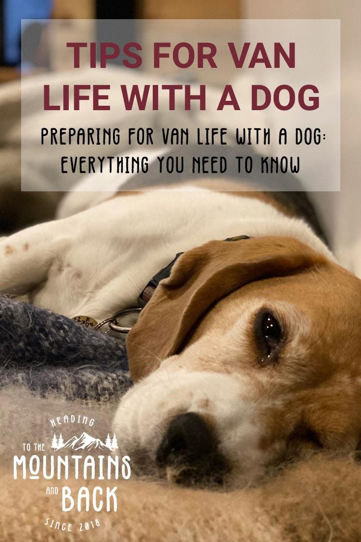 Pin Van Life with a Dog