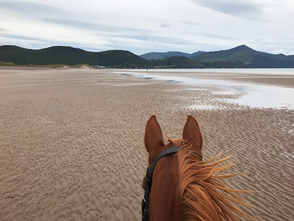 Horse Riding on the Wild Atlantic Way